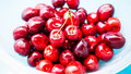 A bunch of juicy cherries Royalty Free Stock Photo