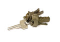 Bunch of keys the isolated Royalty Free Stock Photo