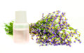A bunch of lavender flowers on a white background with oil Royalty Free Stock Photos