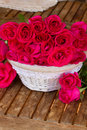 Bunch of mauve roses in basket Royalty Free Stock Photo