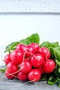 Bunch of organic fresh red radishes Royalty Free Stock Photo