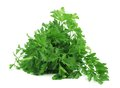 Bunch of parsley on a white background Stock Photo