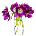 Bunch of purple tulips in vase Stock Photo