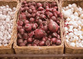 Bunch of red onion, white onion and garlic in wicker tray in supermarket Royalty Free Stock Photo