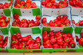 Bunch of red paprika in boxes Stock Images