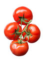 Bunch of red tomatoes isolated on white top view Royalty Free Stock Images