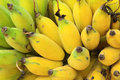 Bunch of ripe banana Royalty Free Stock Photography