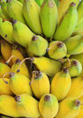 Bunch of ripe banana Stock Photos