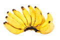 Bunch of ripe lady finger banana isolated on white Royalty Free Stock Photo