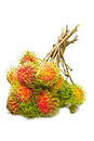 A Bunch Of Ripe Rambutan Royalty Free Stock Image