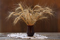 Bunch of ripe wheat ears Royalty Free Stock Photo