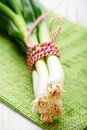 Bunch of spring onions Royalty Free Stock Photo