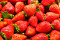 A bunch of Strawberries Royalty Free Stock Photo