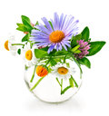Bunch summery flowers in glass vase on white background Stock Photos