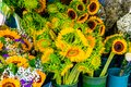 Bunch of sunflowers at a florist Royalty Free Stock Photo