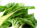 A bunch of Swiss chard 2 Royalty Free Stock Image