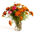 Bunch of tagetes in glass isolated on white background Stock Photos