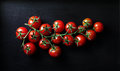 Bunch of tomatoes. Royalty Free Stock Photo