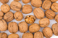 A bunch of walnuts on a white background