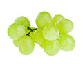 Bunch of white grapes with water drops isolated on Royalty Free Stock Photo