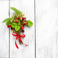 Bunch of wild strawberry Royalty Free Stock Photo