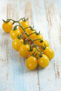 Bunch of yellow cherry tomatoes Royalty Free Stock Photo