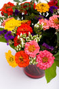 Bunch of zinnias Royalty Free Stock Photography