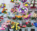bunches of big fresh orange pink red gerbera chamomile rose and big white yellow blue chrysanthemum flower Royalty Free Stock Photo