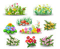 Bunches of flowers collection vector illustration set isolated on a white background Stock Images
