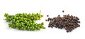 Bunches of fresh green pepper and black peppercorn on white background Royalty Free Stock Photos