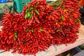 stock image of  Bunches of fresh organic red and green hot chili peppers.
