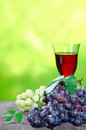 Bunches of fresh red and white grapes with an elegant glass of red wine outdoors against a blurred green backdrop with copyspace Royalty Free Stock Photography