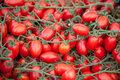 Bunches of fresh ripe red cherry tomatoes close-up Stock Images