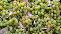 Bunches of green grapes Royalty Free Stock Photos