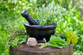 Bunches of healing herbs, mortar and pestle on stump. Royalty Free Stock Photo