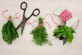 Bunches of herbs with old-fashioned scissors. Wood background. Royalty Free Stock Photo