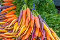 Bunches organic rainbow carrots display of of colorful copy space Stock Photo