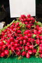 Bunches of radish sale garden at the vegetable market red with blank white sheet paper for a price Stock Photography