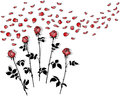 Bunches of roses silhouettes with red petals on white Stock Photography