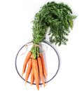 Bundle of carrots plate with over white background top view Stock Photo