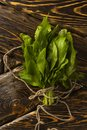 A bundle of fresh green sorrel tied with a string lies on the old wooden table of rough texture. Copy space