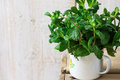 Bundle of fresh organic mint twigs in enamel mug on rustic wood box, spring or summer, natural light, outdoors