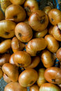Bundle of onions background Royalty Free Stock Photos