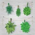 Bundles of flavoring herbs on wooden background