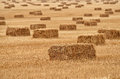 Bundles of hay on the retracted the field. Royalty Free Stock Photo