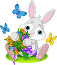 Bunny with bouquet Royalty Free Stock Photos