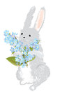 Bunny with a bouquet of forget me not flowers holding Royalty Free Stock Image