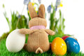Bunny colorful easter eggs spring flowers background Royalty Free Stock Images