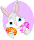 Bunny With Easter Egg and Sign Royalty Free Stock Photography