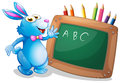 A bunny in front of a chalkboard with pencils at the back Royalty Free Stock Photo